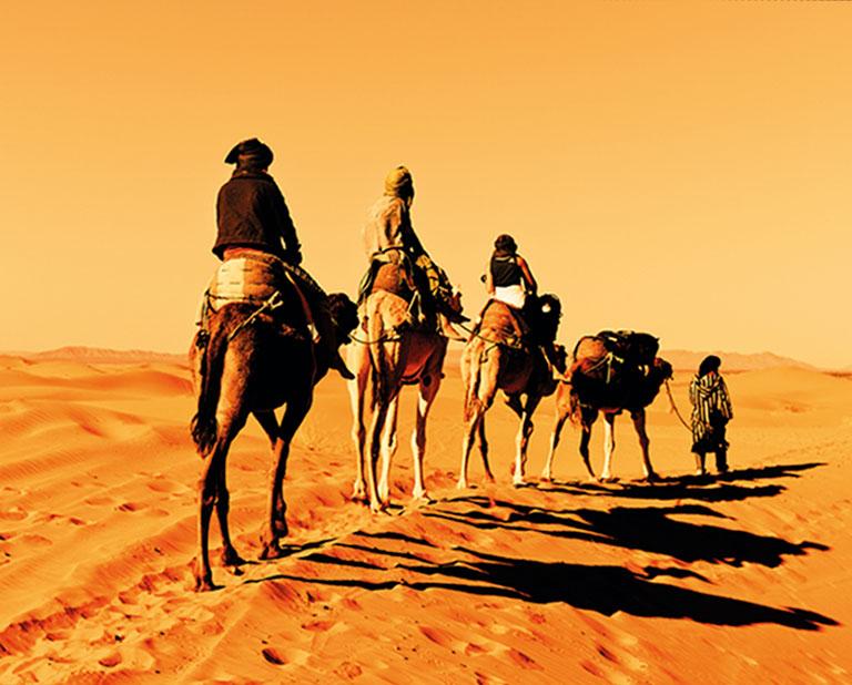 marokkokameler