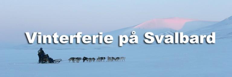 hundeslede-Svalbard-1