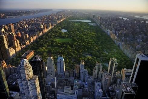new.york_155390825