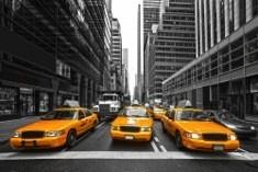 new.york_165497876