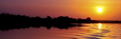 Gambia River 768x250
